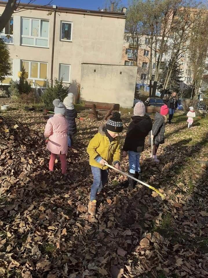 Dzieci grabią liście spod drzew